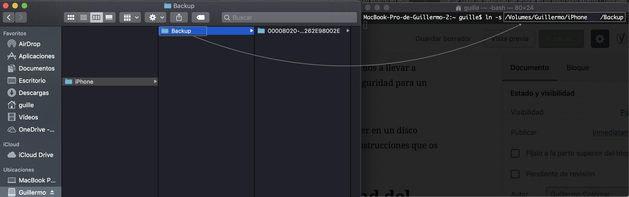 copia de seguridad del iPhone en un disco duro terminal
