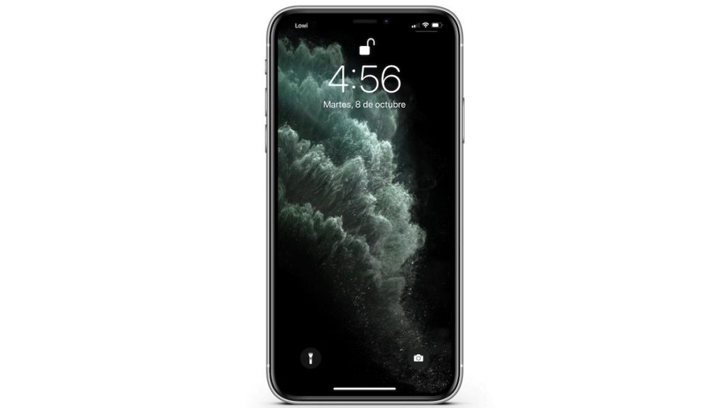 iPhone 11 Pro Max Face ID