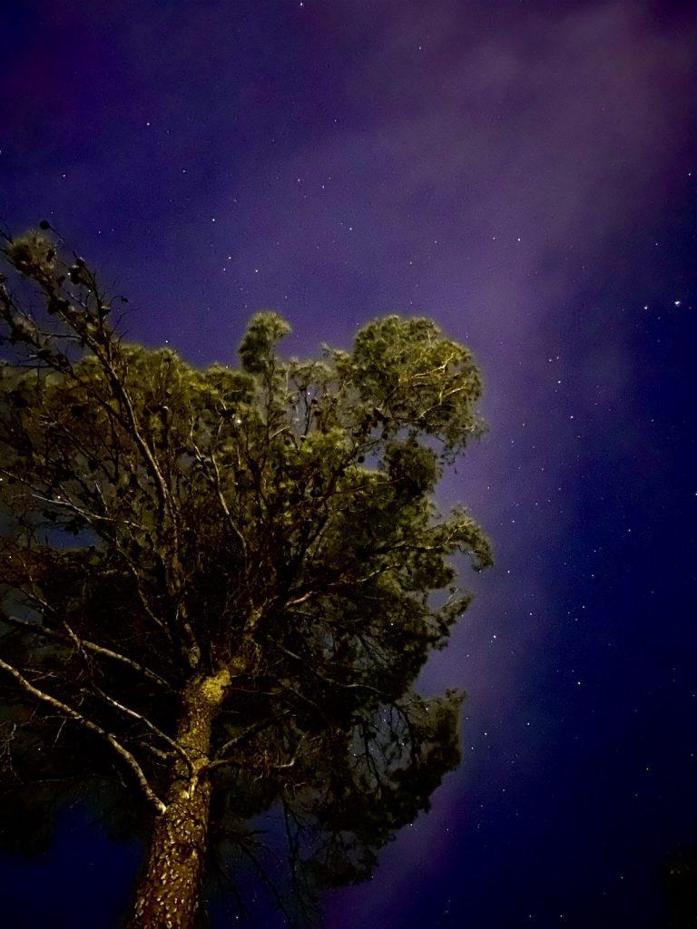 iPhone 11 Pro Max foto editada noche