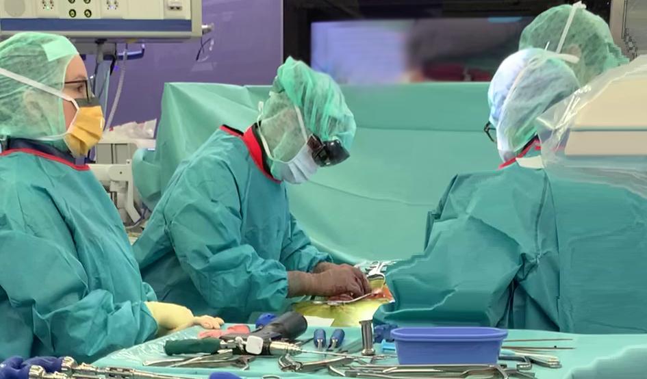 Cirugía de columna navegada holográficamente .