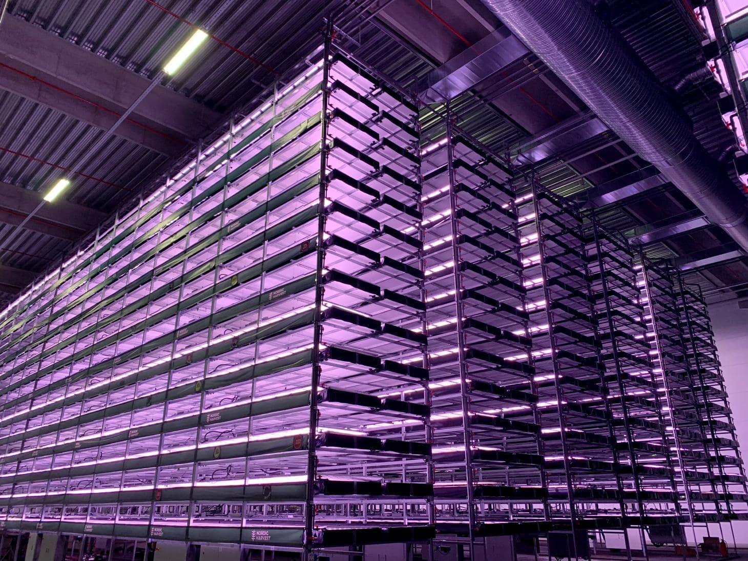 Resultado de imagen para Esta innovadora granja vertical en Dinamarca producirá mil toneladas de comida al año