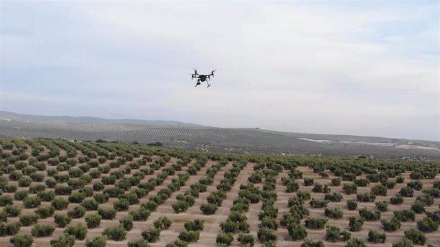 Simulacro en Jadén con drones